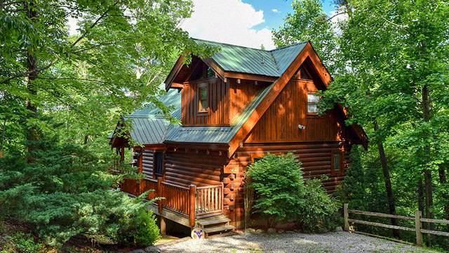 4170 Evans Chapel Rd, Sevierville, TN 37876 (#1157599) :: JET Real Estate