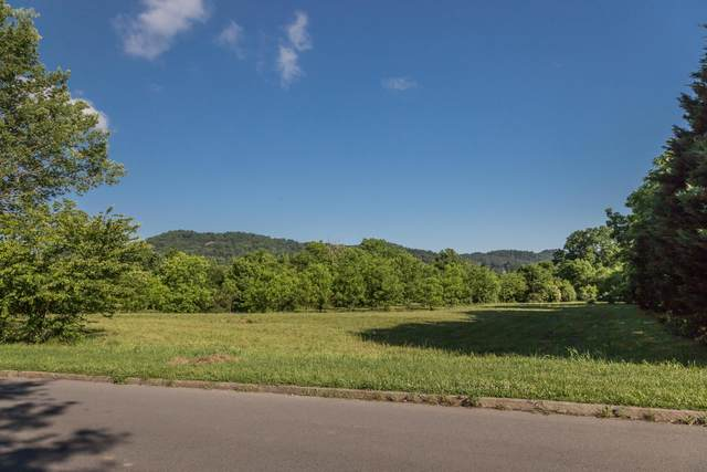 Lot 10 Cove Meadows Drive, Sevierville, TN 37862 (#1157611) :: Billy Houston Group