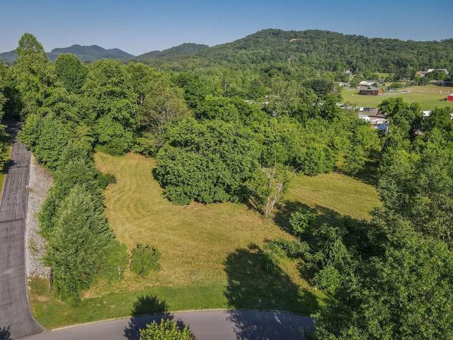 Lot 11 Cove Meadows Drive, Sevierville, TN 37862 (#1157617) :: Billy Houston Group