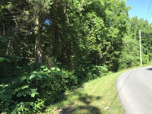 Fawn View Drive, Sevierville, TN 37862 (#1157654) :: The Terrell-Drager Team