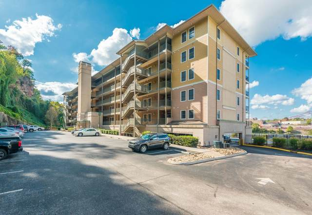 3001 River Towne Way Apt 205, Knoxville, TN 37920 (#1157702) :: Billy Houston Group