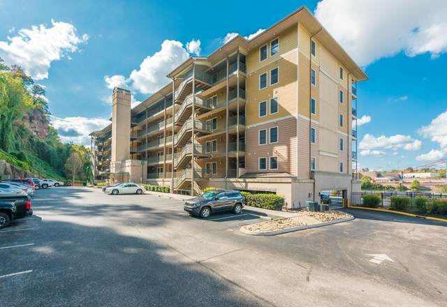 3001 River Towne Way Apt 307, Knoxville, TN 37920 (#1157709) :: Billy Houston Group