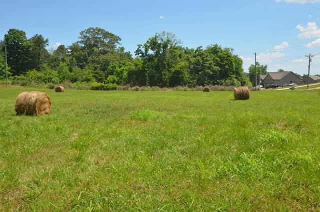 1243 Marble Hill Rd, Friendsville, TN 37737 (#1157725) :: Realty Executives Associates