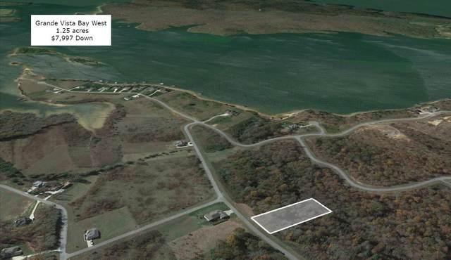 422 Water View Drive, Rockwood, TN 37854 (#1157810) :: Realty Executives Associates
