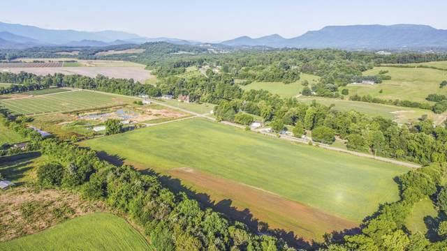 Mantooth Hills Way, Newport, TN 37821 (MLS #1157995) :: Austin Sizemore Team