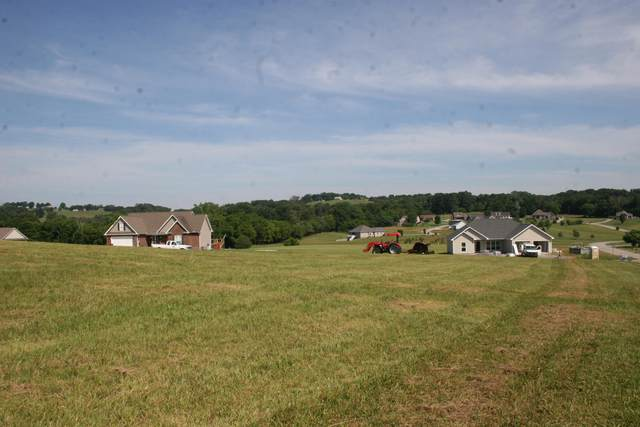 Old Hickory Circle, Madisonville, TN 37354 (#1158081) :: Shannon Foster Boline Group