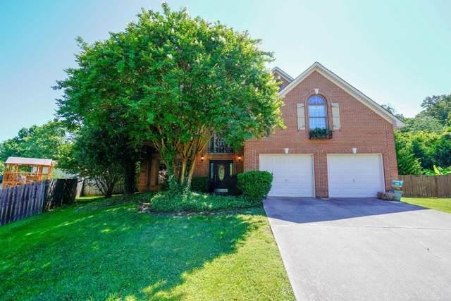 8106 Tamarack Rd, Knoxville, TN 37919 (#1158109) :: JET Real Estate