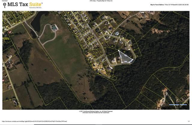 Trillium Drive, Andersonville, TN 37705 (#1158208) :: Shannon Foster Boline Group