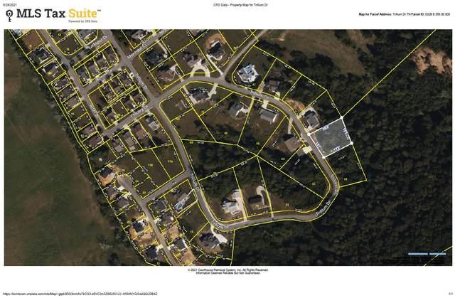 Trillium Drive, Andersonville, TN 37705 (#1158211) :: Shannon Foster Boline Group