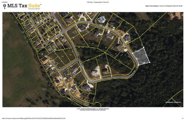 Trillium Drive, Andersonville, TN 37705 (#1158212) :: Shannon Foster Boline Group