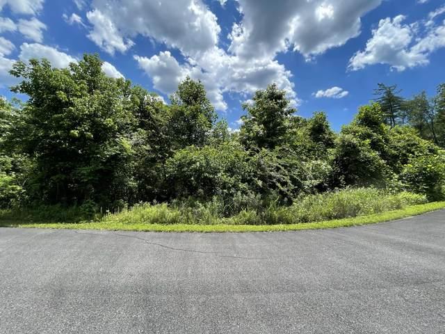 00 Bear Track Way, Del Rio, TN 37727 (#1158272) :: Billy Houston Group