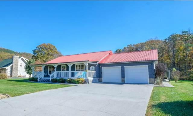 3508 Autumn Woods Lane, Sevierville, TN 37862 (#1158429) :: Billy Houston Group