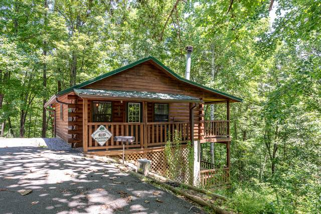 2025 Lones Branch Lane, Sevierville, TN 37876 (#1158475) :: Cindy Kraus Group | Realty Executives Associates