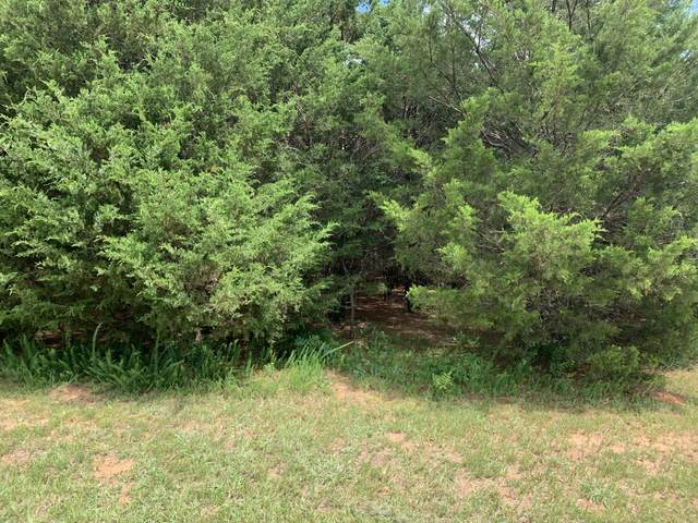 lot 21 Dudi Tr, Vonore, TN 37885 (#1158668) :: Cindy Kraus Group | Realty Executives Associates