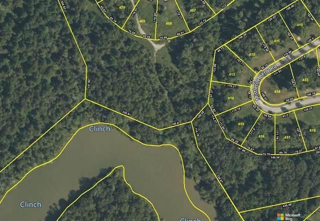 125 Mistletoeberry Rd Lot 414, Oak Ridge, TN 37830 (#1158720) :: JET Real Estate