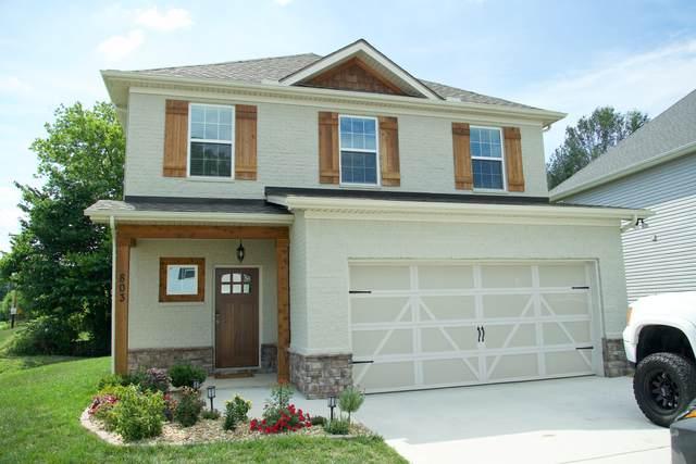 803 Festival Lane, Knoxville, TN 37923 (#1158802) :: JET Real Estate