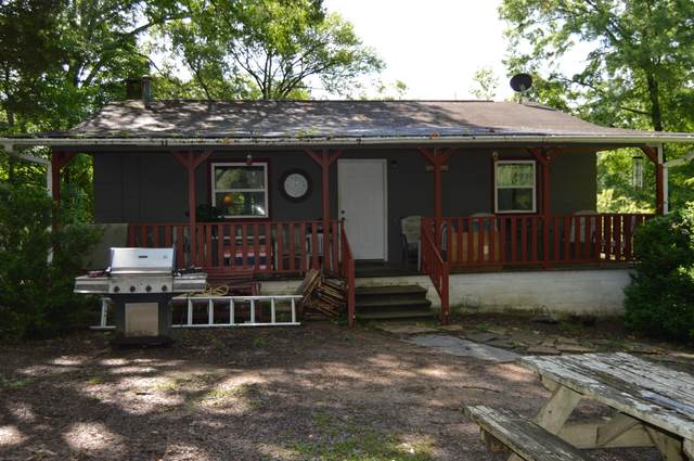 100 Lakeshore Drive, Spring City, TN 37381 (#1158965) :: Realty Executives Associates