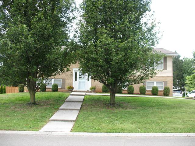 7423 Northampton Blvd, Knoxville, TN 37931 (#1159204) :: Shannon Foster Boline Group