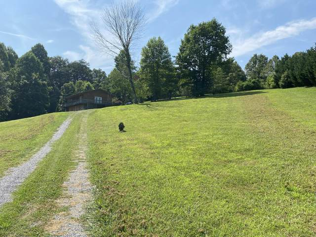 29 Myers Rd, Tellico Plains, TN 37385 (#1159236) :: Shannon Foster Boline Group