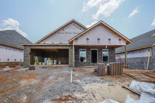 238 Sand Hills Drive, Maryville, TN 37801 (#1159317) :: Cindy Kraus Group | Realty Executives Associates