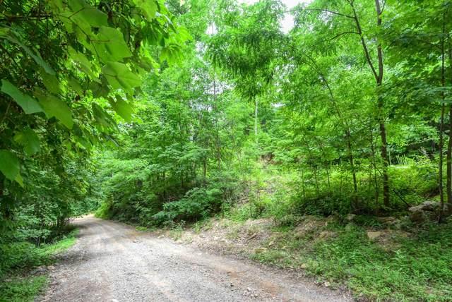 Goose Creek  Lot 64 Way, Seymour, TN 37865 (#1159509) :: The Terrell-Drager Team