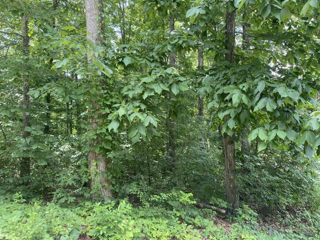 00 County Road 1121, Athens, TN 37303 (#1159565) :: Shannon Foster Boline Group