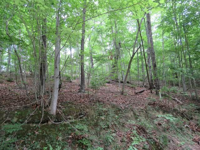 Lot 46B Cherokee Drive, Smithville, TN 37166 (#1159593) :: Billy Houston Group