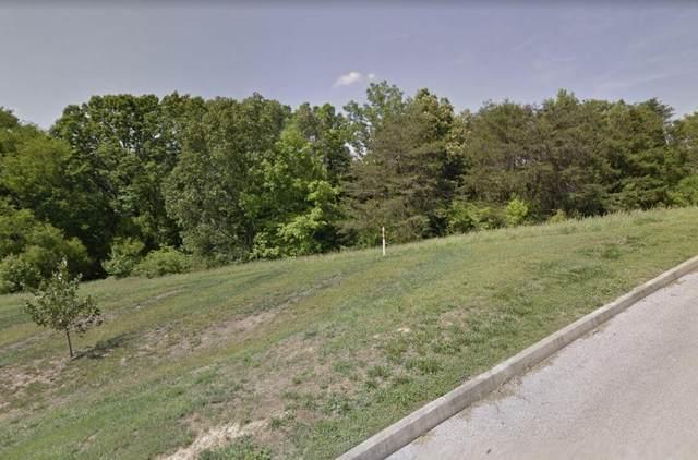 930 Trinity View Circle, Seymour, TN 37865 (#1159723) :: Billy Houston Group