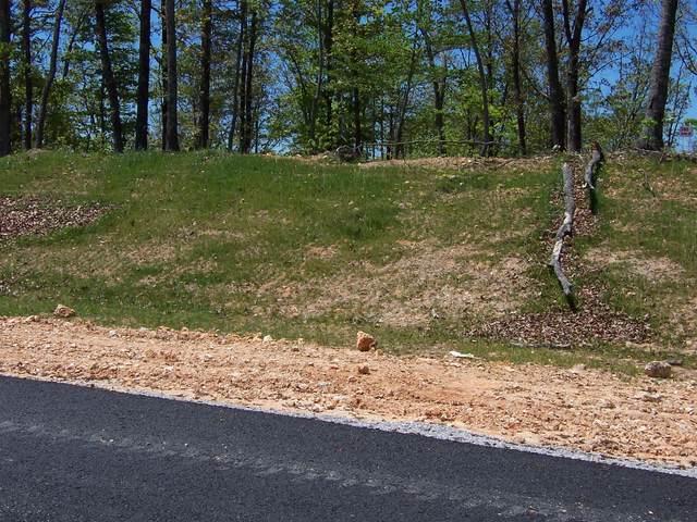 506 Thief Neck View Drive, Rockwood, TN 37854 (#1159745) :: A+ Team