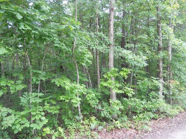 Topside Rd, Jamestown, TN 38556 (#1159753) :: Billy Houston Group
