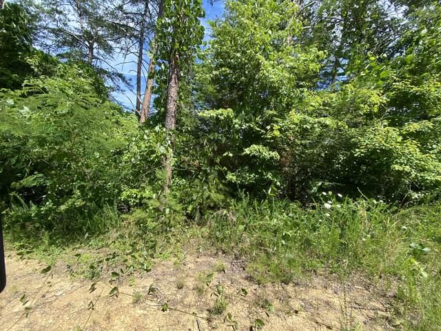 Azalea Trail Tr, Sevierville, TN 37876 (#1159772) :: Billy Houston Group