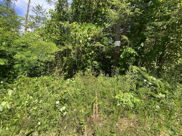 Azalea Trail Tr, Sevierville, TN 37876 (#1159773) :: Billy Houston Group
