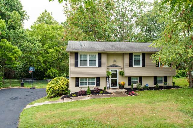 5813 Wexford Lane, Knoxville, TN 37921 (#1159803) :: Tennessee Elite Realty