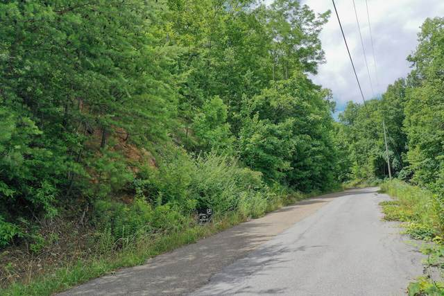 Lot 71 Big Bear Ridge, Gatlinburg, TN 37738 (#1159940) :: JET Real Estate