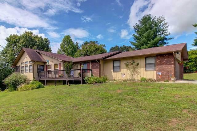 420 Mckinney Drive, Sevierville, TN 37876 (#1160148) :: The Terrell-Drager Team