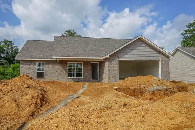 224 Horton Lane, Maryville, TN 37803 (#1160158) :: JET Real Estate
