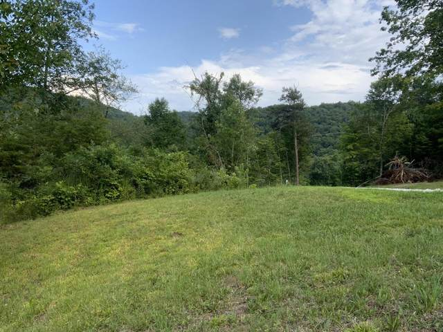 Perry Smith Lane, Caryville, TN 37714 (#1160172) :: Billy Houston Group