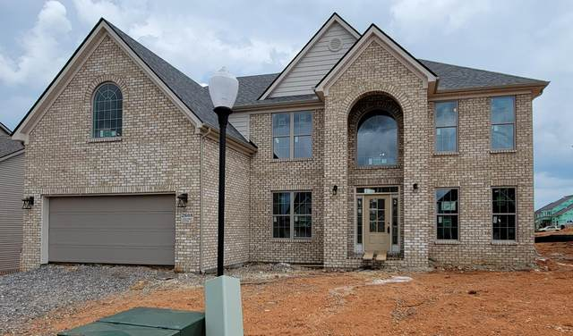 2608 Jacobs Canyon Lane, Knoxville, TN 37932 (#1160203) :: Shannon Foster Boline Group