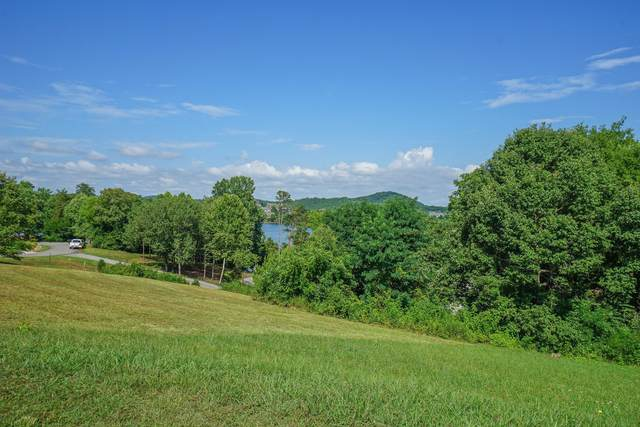 304 Southshore Drive, Greenback, TN 37742 (#1160369) :: The Cook Team