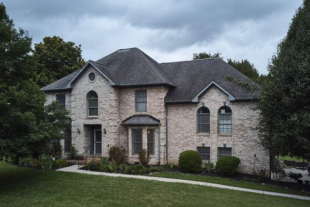 12041 Broadwood Drive, Knoxville, TN 37934 (#1160410) :: The Cook Team