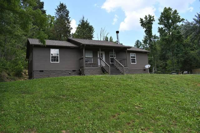 393 Lane Hollow Rd, Sevierville, TN 37876 (#1160848) :: The Terrell-Drager Team