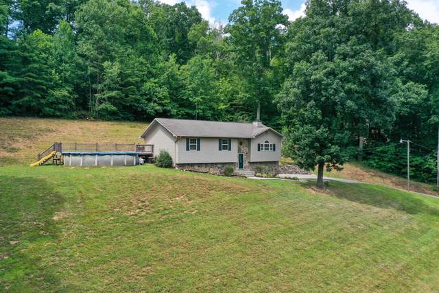 205 Dogwood Lane, Maynardville, TN 37807 (#1161013) :: A+ Team
