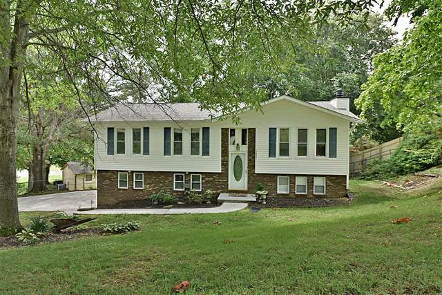 5837 Outer Drive, Knoxville, TN 37921 (#1161066) :: Cindy Kraus Group | Realty Executives Associates