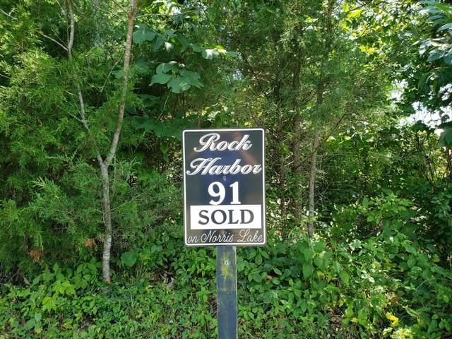 91 Smokey Quartz Blvd, New Tazewell, TN 37824 (#1161082) :: Billy Houston Group