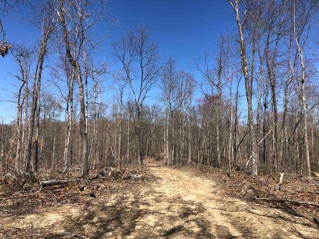 Mountain Creek Rd, Pikeville, TN 37367 (#1161086) :: Billy Houston Group