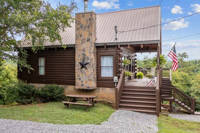 1073 Sunset View Rd, Sevierville, TN 37876 (#1161173) :: Shannon Foster Boline Group