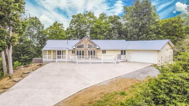209 Shoreside Rd, New Tazewell, TN 37825 (#1161279) :: JET Real Estate