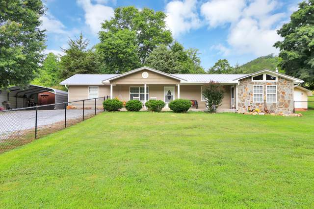 2730 Goose Gap Rd, Sevierville, TN 37876 (#1161290) :: Billy Houston Group