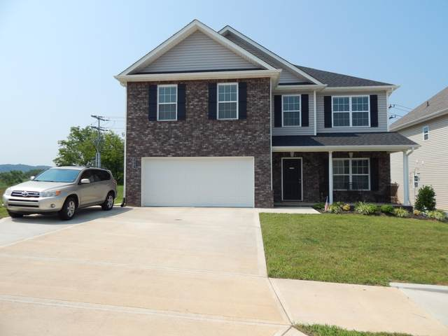 3007 Creekbend Lane, Knoxville, TN 37931 (#1161407) :: Catrina Foster Group