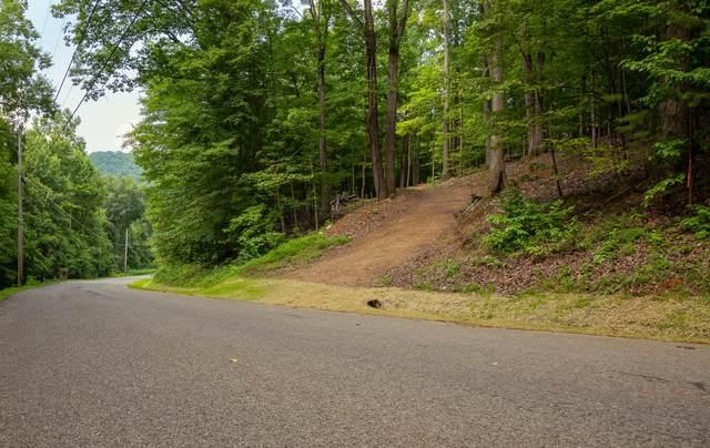 490 Fox Ridge Lane, Caryville, TN 37714 (#1161420) :: Billy Houston Group